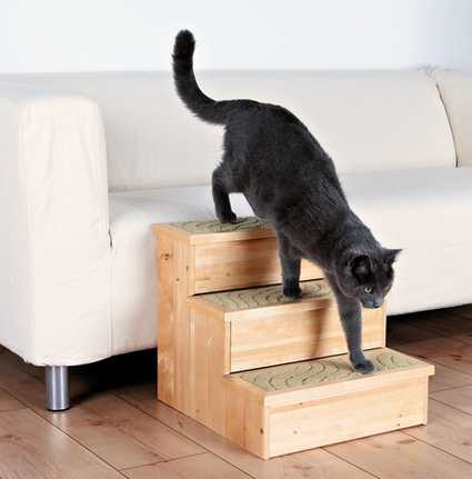 Gato usando las escaleras PetStair de Trixie