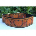 Collar martingale Kidney naranja