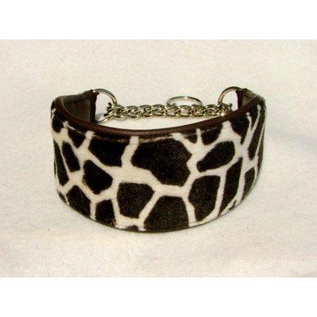 Collar Galgo Safari