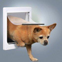 Trampilla para perros pequeños