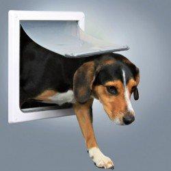 Trampilla para perros medianos