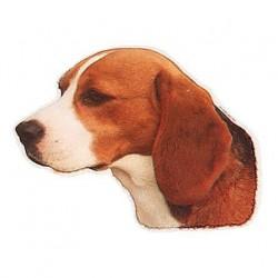 Pegatina de Beagle