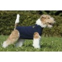 Camiseta protectora Medical Pet