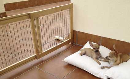 Los perros de Margit con la barrera extensible de Mimopets