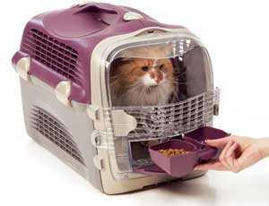 Acceso al comedero en el CatIt Pet Cargo Cabrio de Hagen