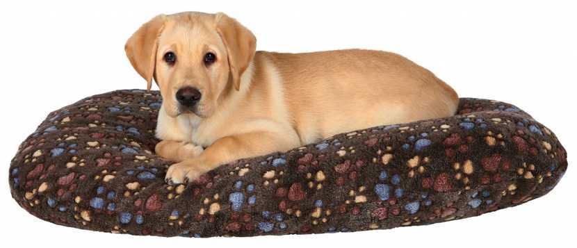 Cojín Laslo para perros en Mimopets