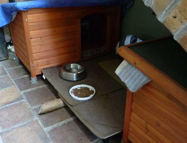 Casitas Natura para la colonia de gatos Mimopets