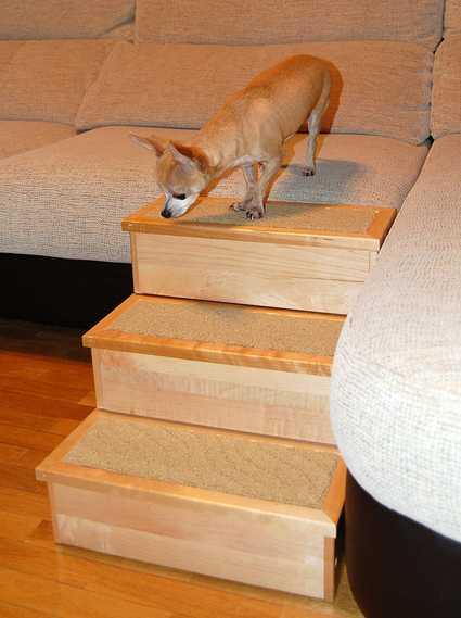 Escalera para perros y gatos PetStair