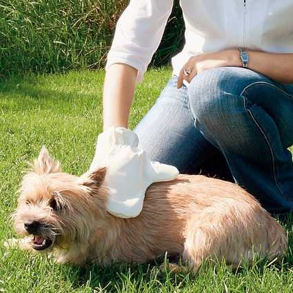 Guante de masaje para perros y gatos