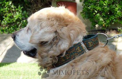 Explicación de como actua un collar para perros martingale