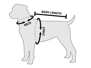 Gráfico para saber cómo medir las 3 principales medidas de un perro
