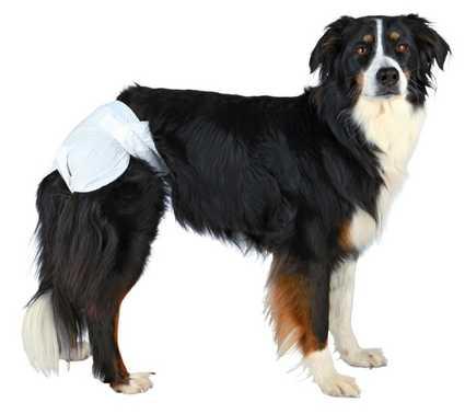 Pañales para perro de diferentes tallas de la marca alemana Trixie
